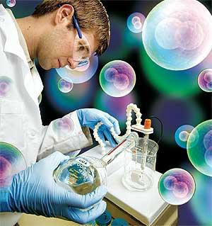 Células madre para regenerar corazón